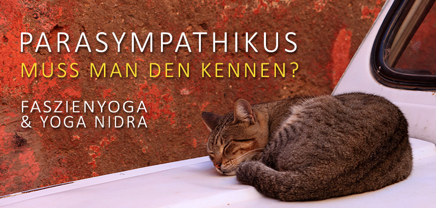 PARASYMPATHIKUS-MUSS MAN DEN KENNEN? OPENMINDYOGA Workshop - Yin Yoga und Yoga Nidra - am 24. November 2019 von 10-13 Uhr in der Printarena, Schnackenburgsallee 158, Hamburg