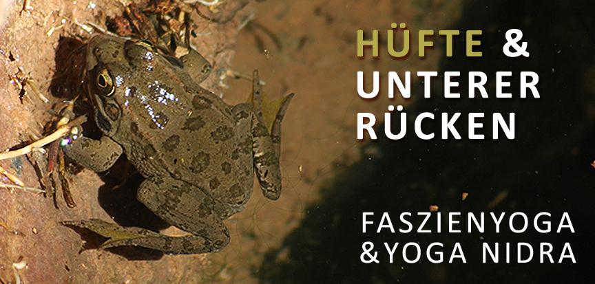 OPENMINDYOGA WORKSHOP Faszienyoga, Hüfte & unterer Rücken, am 29.3.2020 von 10-13 Uhr in der Printarena, Schnackenburgsallee 158, Hamburg